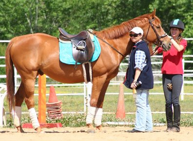 OTTB Baileysontherocks and his new family.
