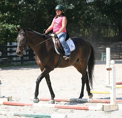 OTTB - Bounced and ten year-old Bree walk though the poles on the ground. August 10, 2008