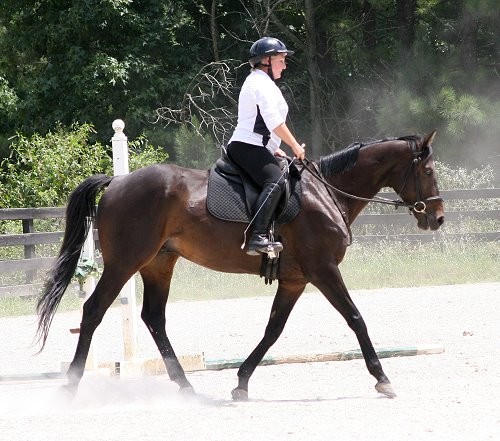 OTTB - Bounced with visitor Susan Dye. July 19, 2009