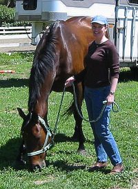 Former Bits & Bytes Farm Thoroughbred horse for sale - Chouette Player arriving in Palos Verdes, California. May 7, 2005