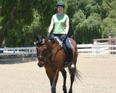 Former Bits & Bytes Farm Thoroughbred horse for sale - Chouette Player in Palos Verdes, California. June 29, 2005