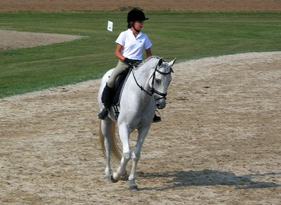 OTTB - Grayboo and Amanda enjoy competing in combined training events.