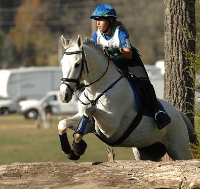 Grayboo moved up to training level eventing at the River Glen Horse Trials. November 2007
