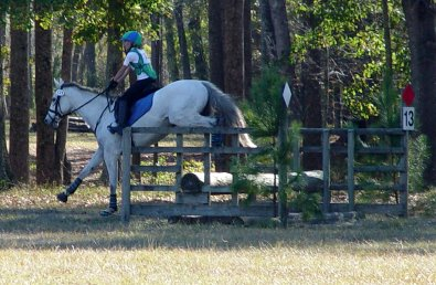 Grayboo and Amanda competed at the Novice level at Pine Top combine training event.