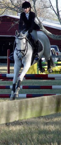 Grayboo and Amanda in the show jumping phase doing the Novice level at Pine Top.