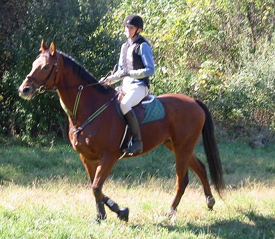 OTTB - Heather's Best x-country riding with his new mom Jennifer DeGier.