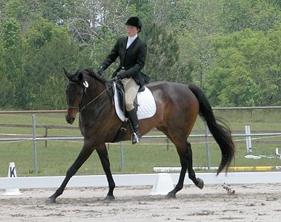 Irish Morning Mist won first place in the dressage phase.