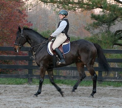 Elizabeth's first ride on OTTB Maximum Impact.