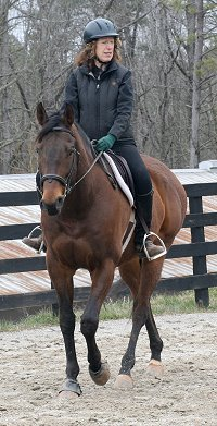 Horse for Sale - Pride of the Fox with Nancy Woodruff up. February 17, 2007
