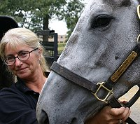 "Urbanissima and Allison Bennet believe in ""Natural Horsemanship""."