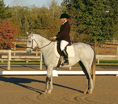 OTTB in dressage class with his young owner.