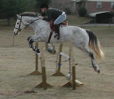 Smokey and Amy take a practice fence.