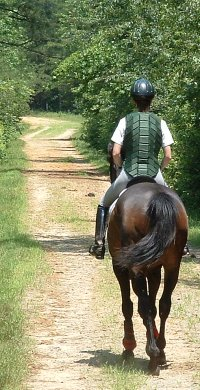 Trail riding at Dawson forest on a former stakes racing Thoroughbred.