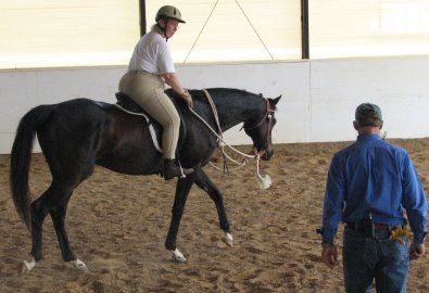 OTTB - Waterloo Slew at a Mark Russell clinic.