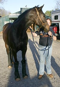 Wiseguy's Out stopped by for a visit in March 2006. He has grown and filled out.