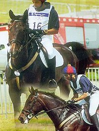 Imtiaz Anees competing at the 2000 Olympics in the 3-Day Eventing competition.