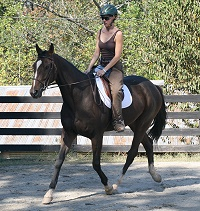 Dawn's third ride on Aly's Alpha Boy was in a group training session.