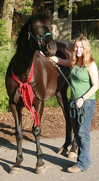 Former Prospect Horse for sale - Coin Maker gets a new mom! May 9, 2007