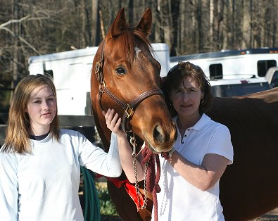 Prospect Horse For Sale Jo Sly Pack has been SOLD! Congratulations to Jenny and Jenna Greene of Gainesville, GA!