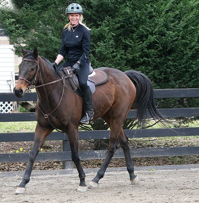 K O River Crossing is an off-the-track Thoroughbred who has a new job as a sport horse.