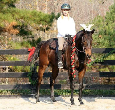 OTTB - K O River Crossing is decked out in antlers!