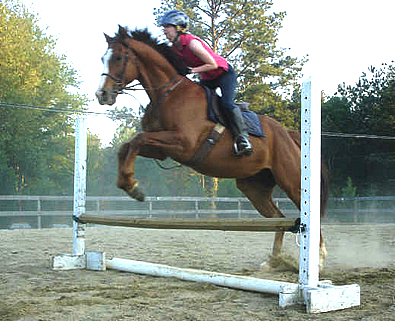 Retraining OTTB Fizzicus to jump. April 22, 2007