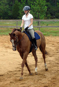 OTTB - Fizzicus and Amanda Curtis have moved to Aiken, SC. July 2007