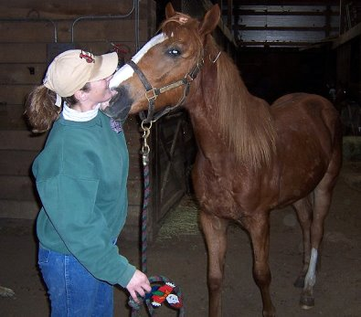 Hollywood Vic tells his mom Becky about being broke to be a race horse. March 2006.
