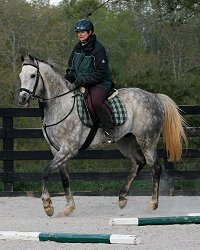 Sing D Song is doing extremely well with his training. April 9, 2007