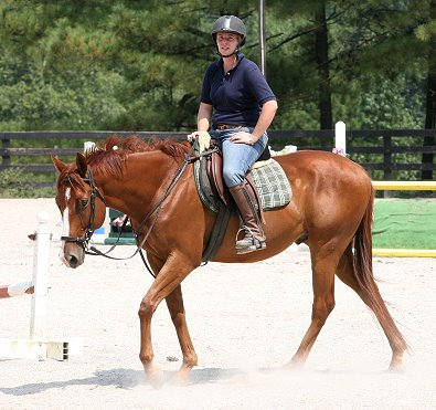 Flame is a wonderful and gentle horse who is looking for a new mom to show with.