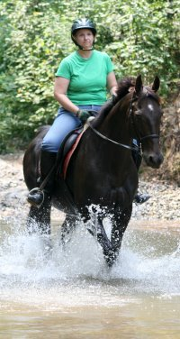 Read  about Queen's Rowdy Lad taking his mom, Mamie on a trail ride.