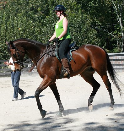 Knight Villain won almost $300,000 and now he is enjoying a second career in dressage. October 7, 2006