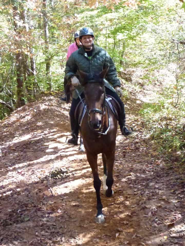 trail-ride-dawson-forest_20121020_014