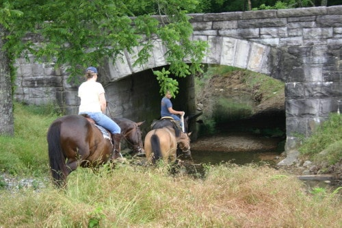 chickamauga-trail-ride_20100530_015