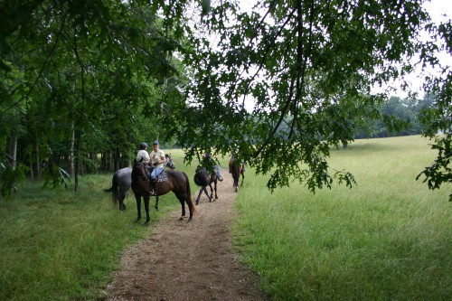 chickamauga-trail-ride_20100530_025