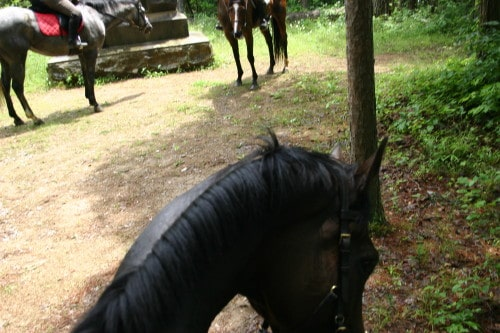 chickamauga-trail-ride_20100530_048