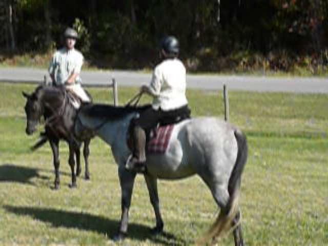 trail-ride-julies_20111008_027