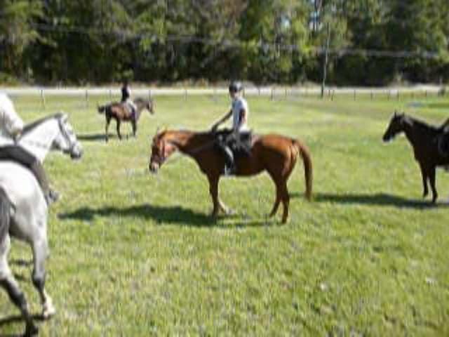 trail-ride-julies_20111008_038