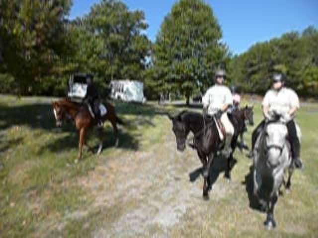 trail-ride-julies_20111008_040