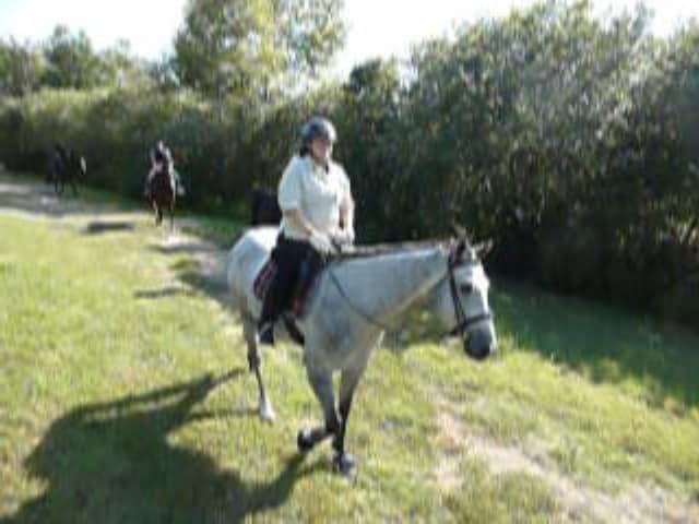 trail-ride-julies_20111008_045