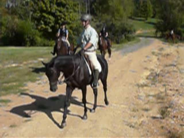 trail-ride-julies_20111008_048
