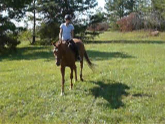 trail-ride-julies_20111008_056