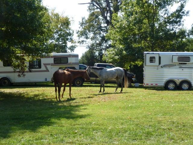 trail-ride-julies_20111008_157
