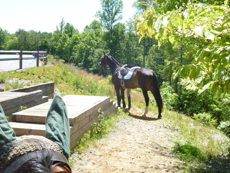 garland-mt-trailride-casey-pull-spot-styler-imatexan_20120602_006