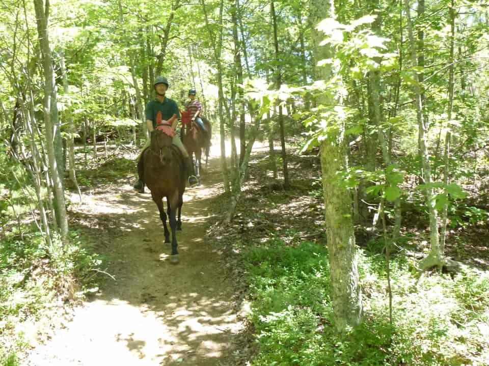 garland-mt-trailride-casey-pull-spot-styler-imatexan_20120602_011