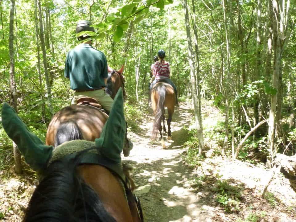 garland-mt-trailride-casey-pull-spot-styler-imatexan_20120602_018
