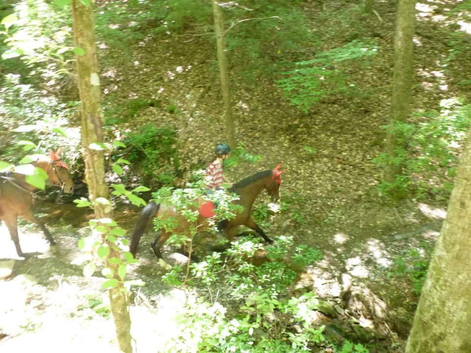 garland-mt-trailride-casey-pull-spot-styler-imatexan_20120602_022