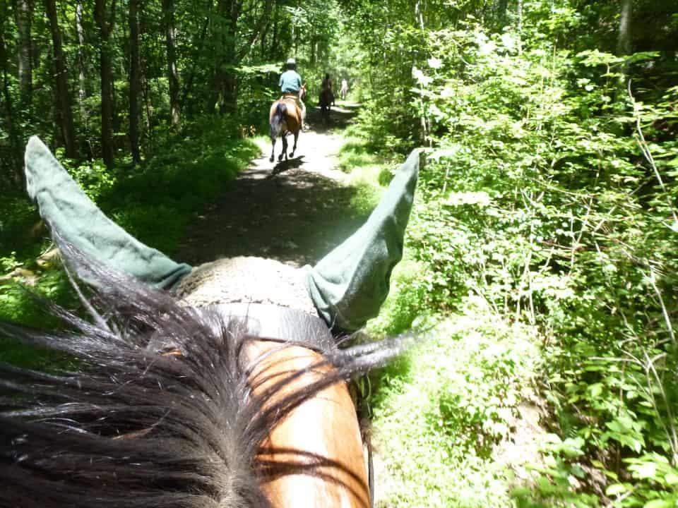 garland-mt-trailride-casey-pull-spot-styler-imatexan_20120602_024