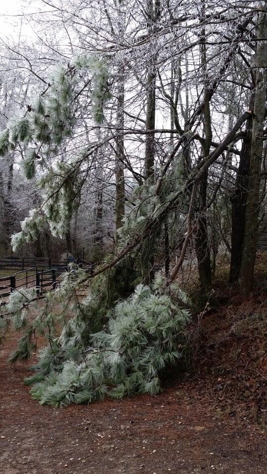 ice-storm20150216-17_20150217_005