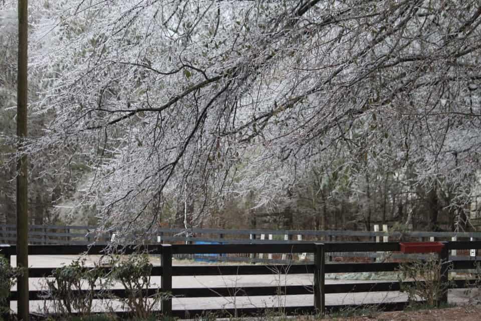 ice-storm20150216-17_20150217_013